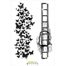 Tampon XXL : Négatif et Papillon