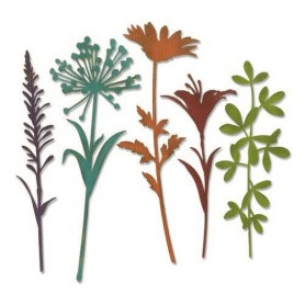 Sizzix Thinlits Die Set - 5PK Wildflower Stems  Tim Holtz