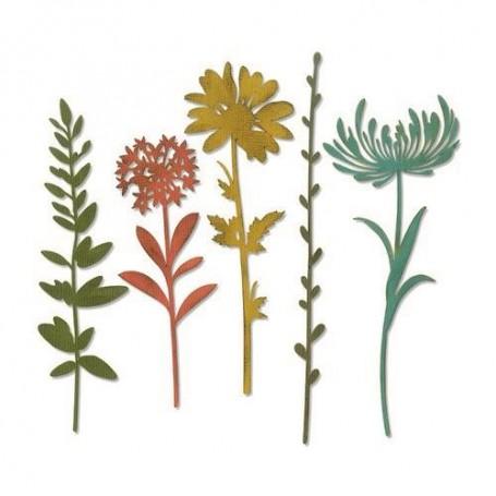 Sizzix Thinlits Die Set - 5PK Wildflower Stems  Tim Holtz