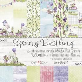 "Paper Collection Set ""12x12"" Spring Bustling"