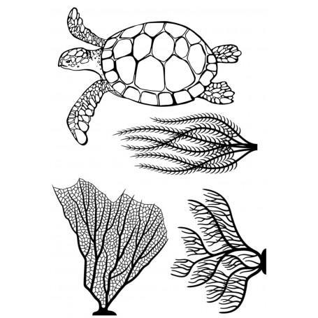 Memories4you - Schildkröte