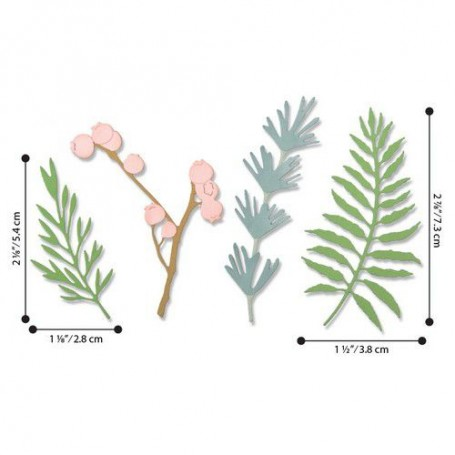 Sizzix Thinlits Die Set - 5PK Natural Leaves  Jen Long