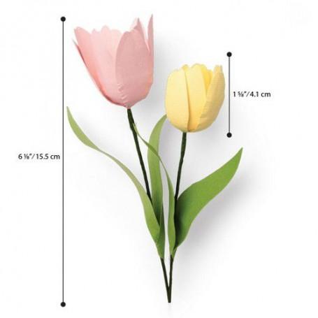 Sizzix Thinlits Die Set - 8PK Tulip 664390 Jennifer Ogborn