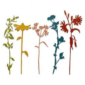 Sizzix Thinlits Die Set - 5PK Wildflower Stems 3 Tim Holtz