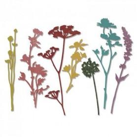 Sizzix Thinlits Die Set - Wildflowers 7PK Tim Holtz
