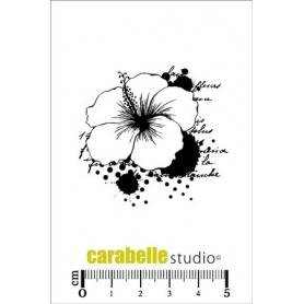 Carabelle Cling Stamp : Hibiscus