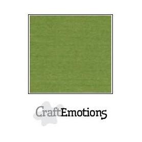 CraftEmotions Leinenkarton 10 Bg Moos 27x13,5cm 250gr